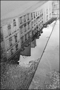 Reflection in Paris